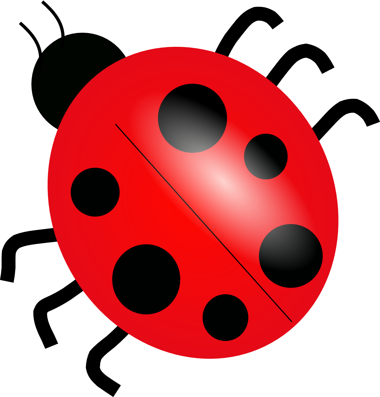 Clipart Info - Ladybug HD PNG