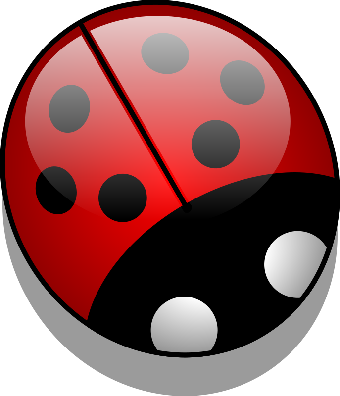 Ladybug PNG - 12564