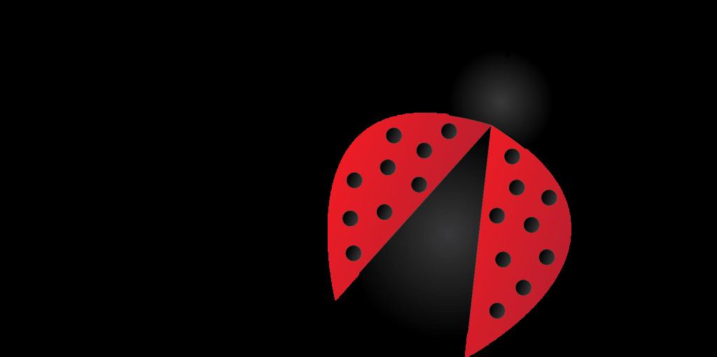 Ladybug PNG - 12566