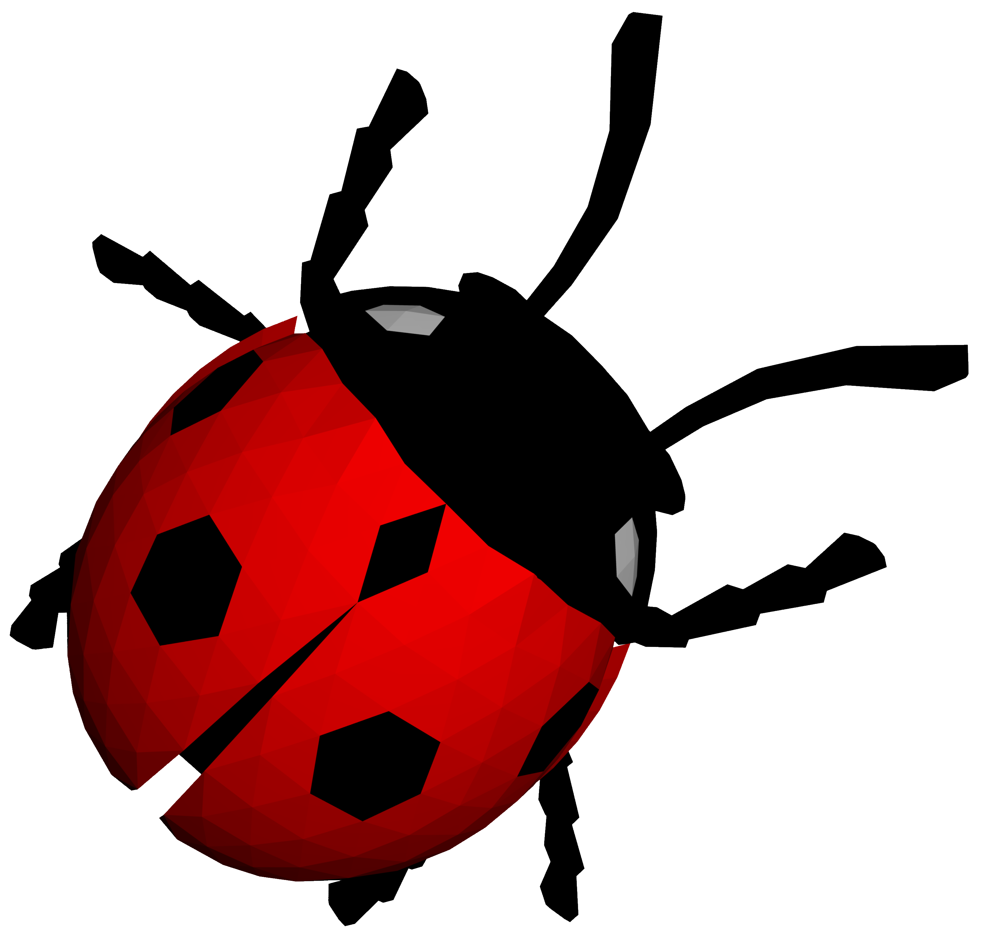 Ladybug PNG - 12563