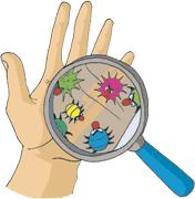Le lavage des mains - Lavage Des Mains PNG