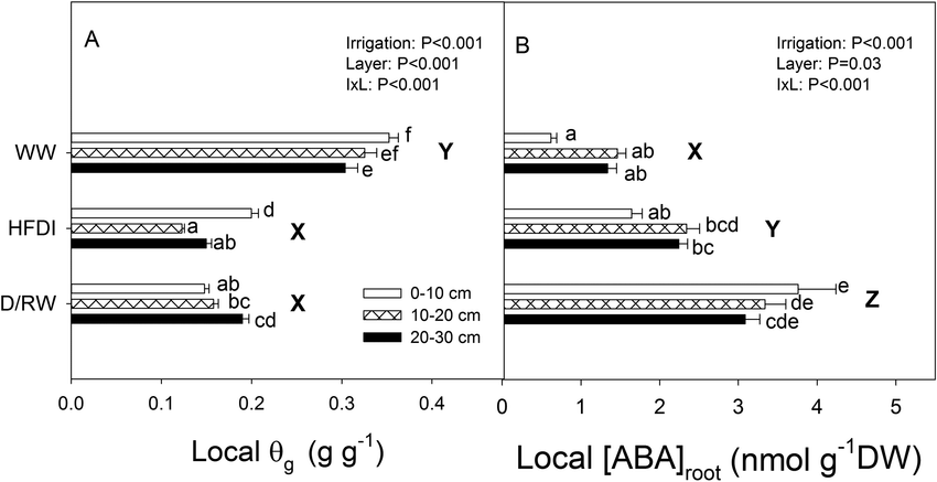 Soil gravimetric water content (θ g ) (A) and ABA concentration in roots - Layers Of Soil PNG Black And White