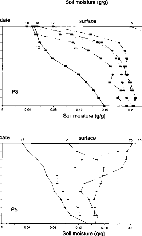 to simulate moist surface conditions over layers of dry soil. They both. ) - Layers Of Soil PNG Black And White
