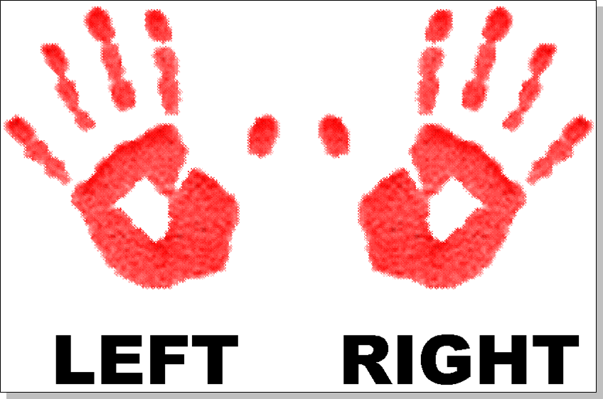 Cliparts Right Hand #2451766 - Left And Right Hand PNG