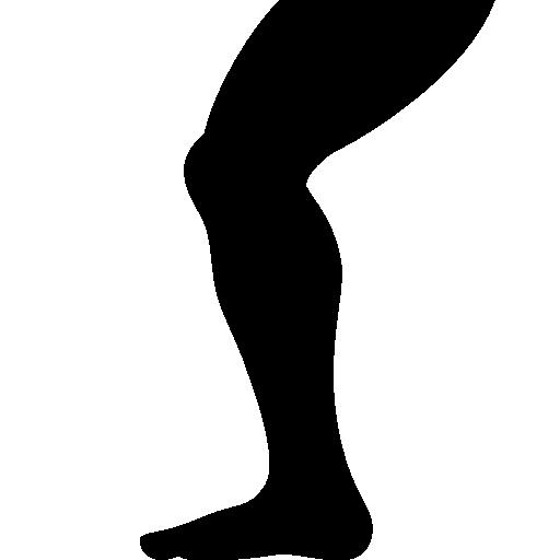 512x512 pixel - Leg PNG
