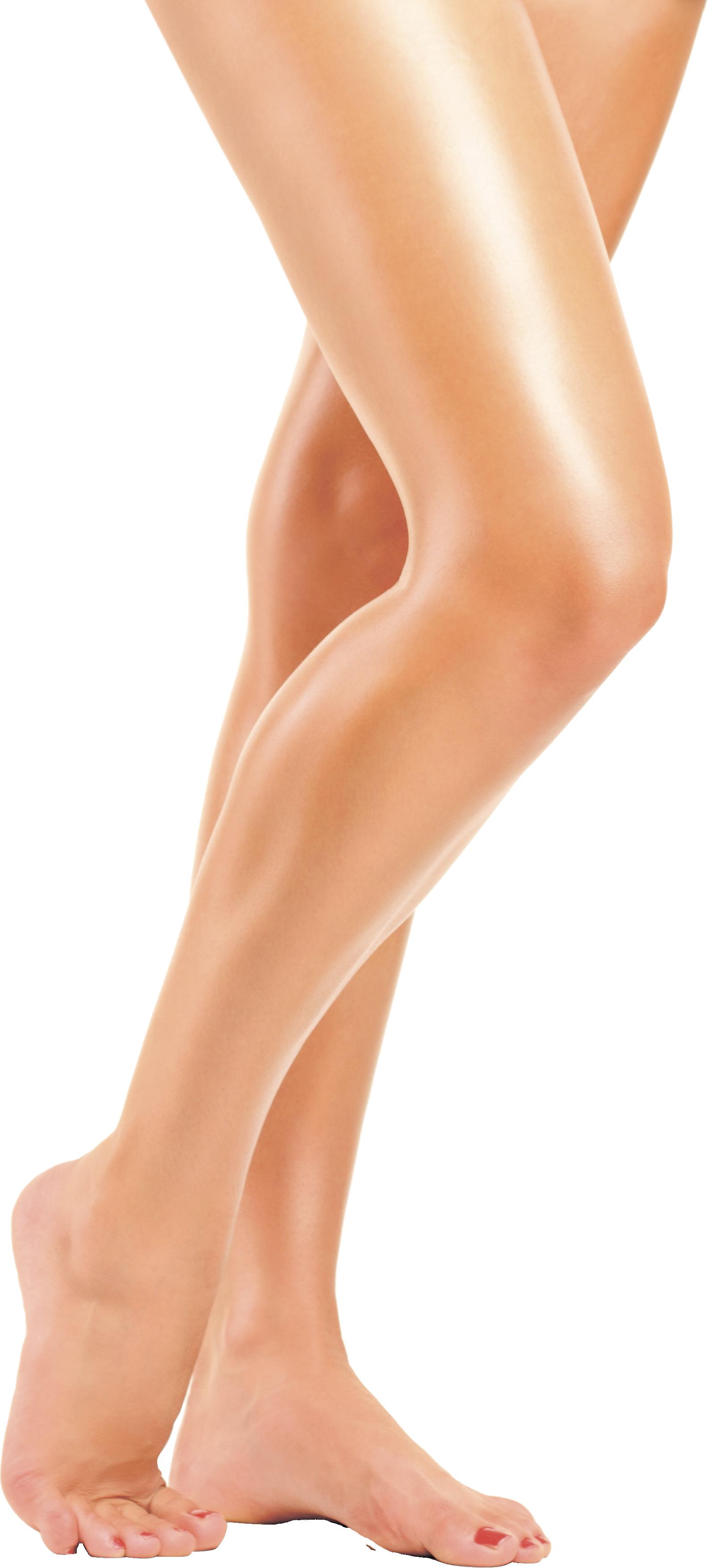 Women legs PNG image - Leg PNG