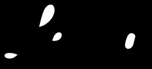 Leica Logo PNG - 107131