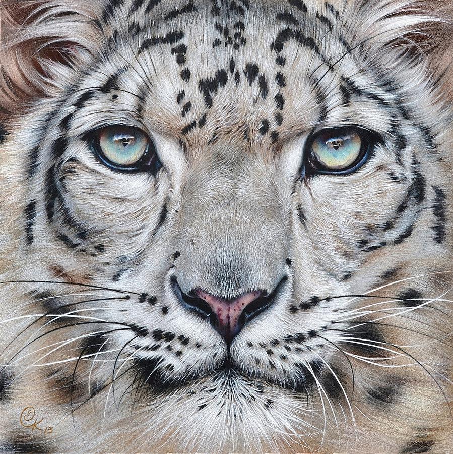 200f0e9.png - Leopard Face PNG