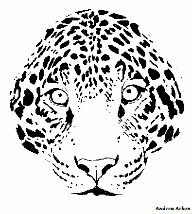Black and white version of the leopard face print (circa: 2012)See more - Leopard Face PNG