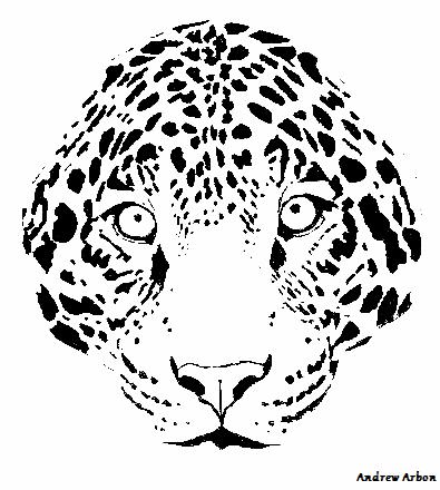 Leopard Face PNG - 42747