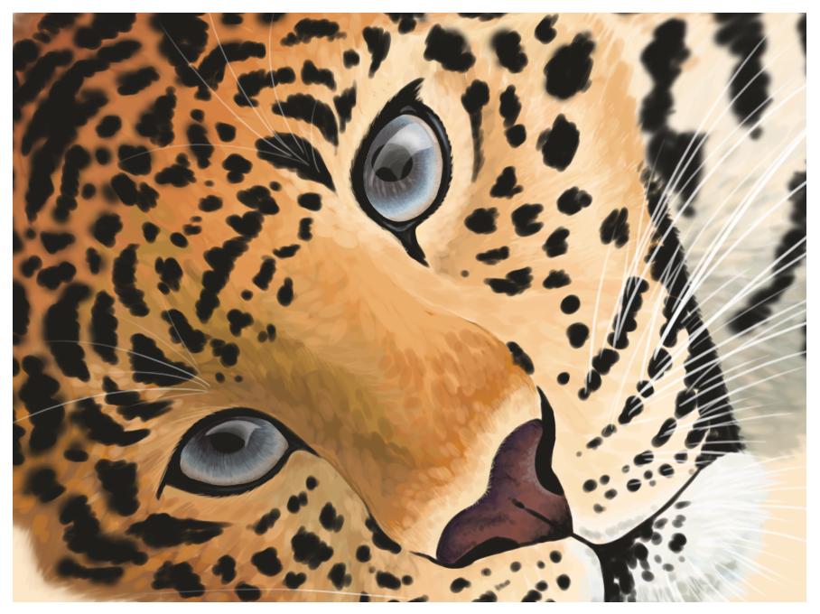 Leopard Face by Abwettar PlusPng.com  - Leopard Face PNG