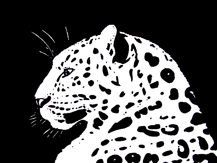 Leopard PNG Black And White - 45781