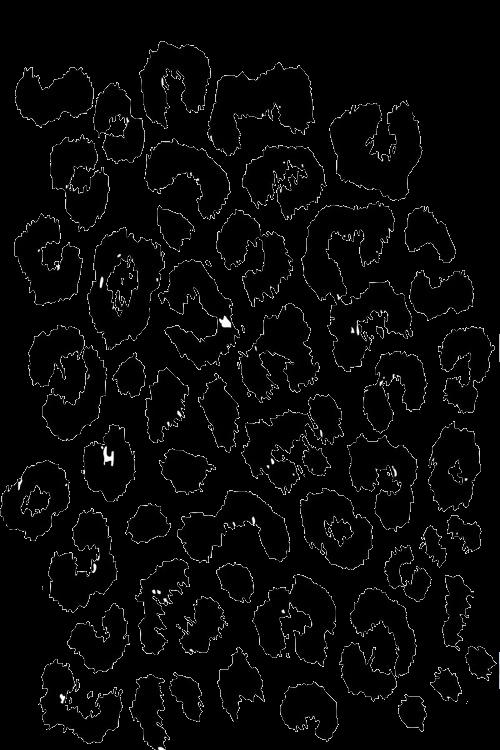 Leopard Print PNG - 43132