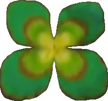 Lily Pad PNG - 73357