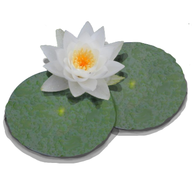LilyPond-logo.png PlusPng.com  - Lily Pad PNG