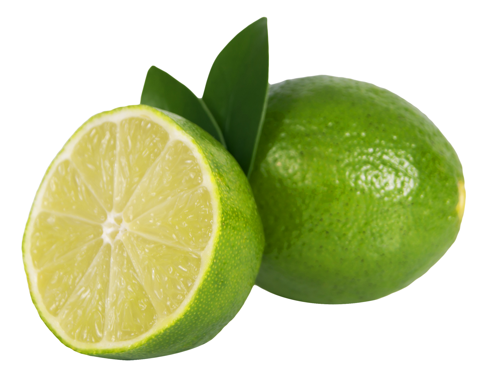 Lime HD PNG-PlusPNG.com-1592 - Lime HD PNG