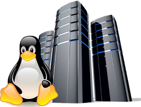 Best Linux Hosting in Bangladesh - Linux Hosting PNG