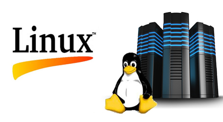 Best Linux Hosting in Banglad