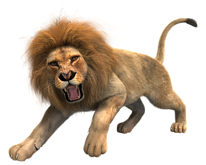 Lion PNG - Lion HD PNG