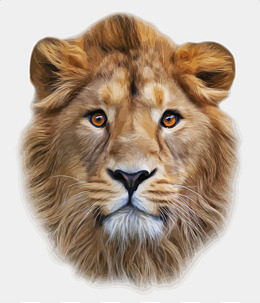 Lion Head PNG HD - 120301