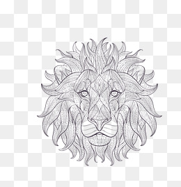 Vector Gray Cartoon Sketch Lion King Head, Vector Lion King, Gray Lion King, - Lion King PNG Black And White