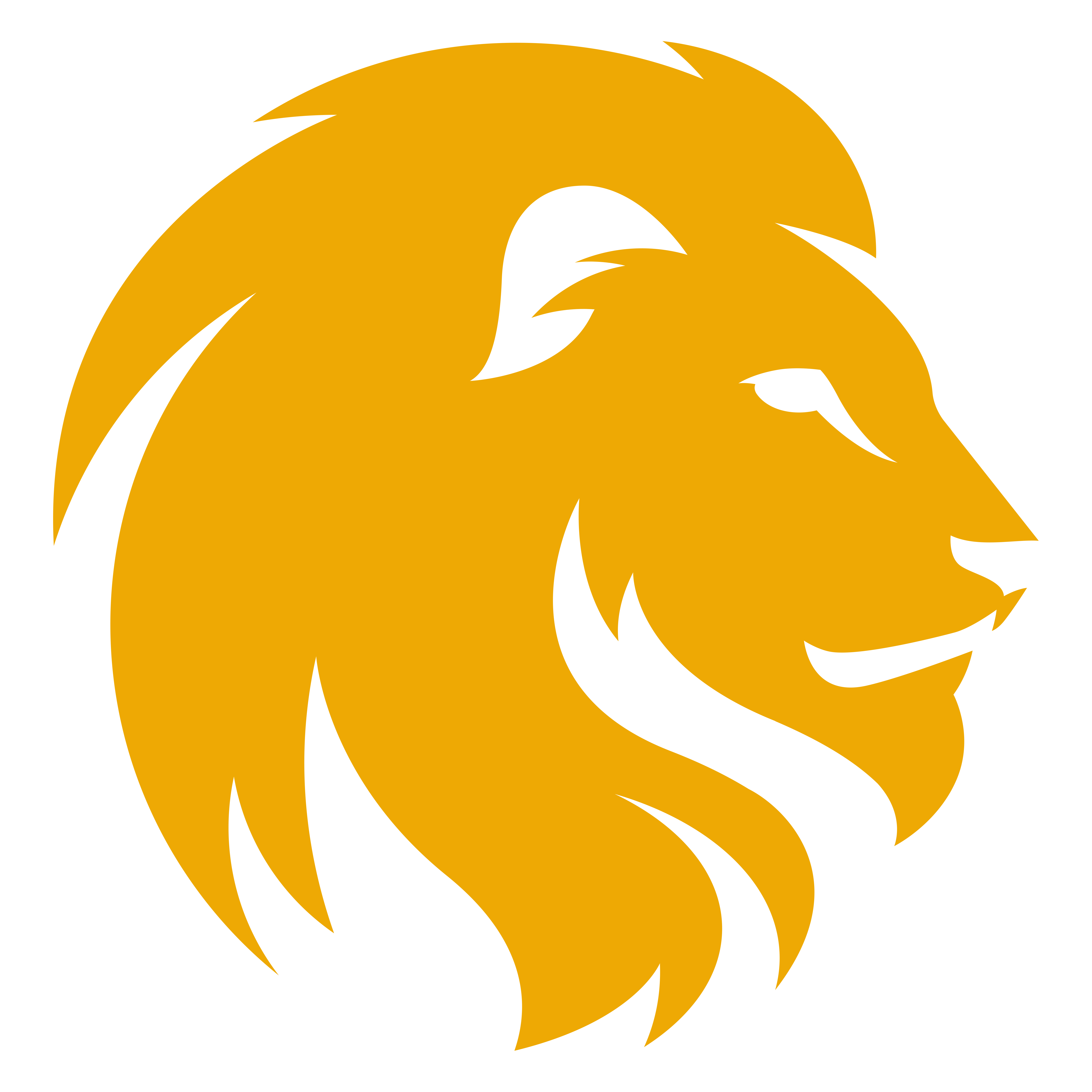 Lion Head PNG Photos - Lions Head HD PNG