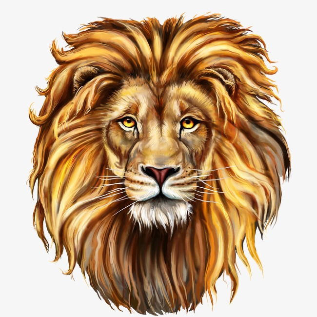 lion, Lion, Animal, Lionhead PNG Image - Lions Head HD PNG