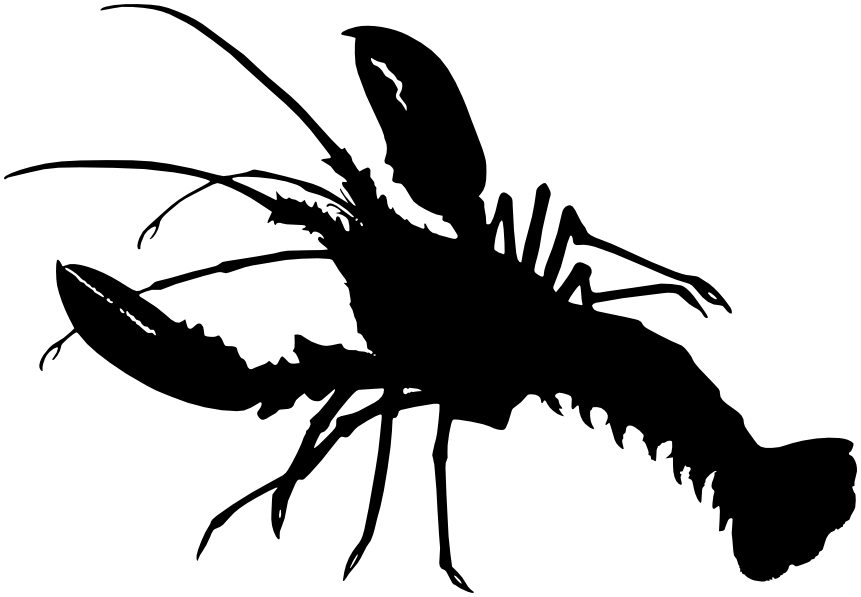 Download pngtransparent PlusPng.com  - Lobster PNG Black And White