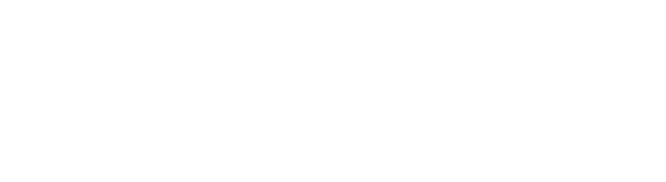 ACN_Inc_Logo.png - Logo Acn PNG