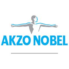 Logo Akzonobel PNG - 116415