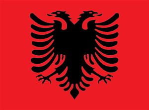 Logo Albanain Eagle PNG - 100097