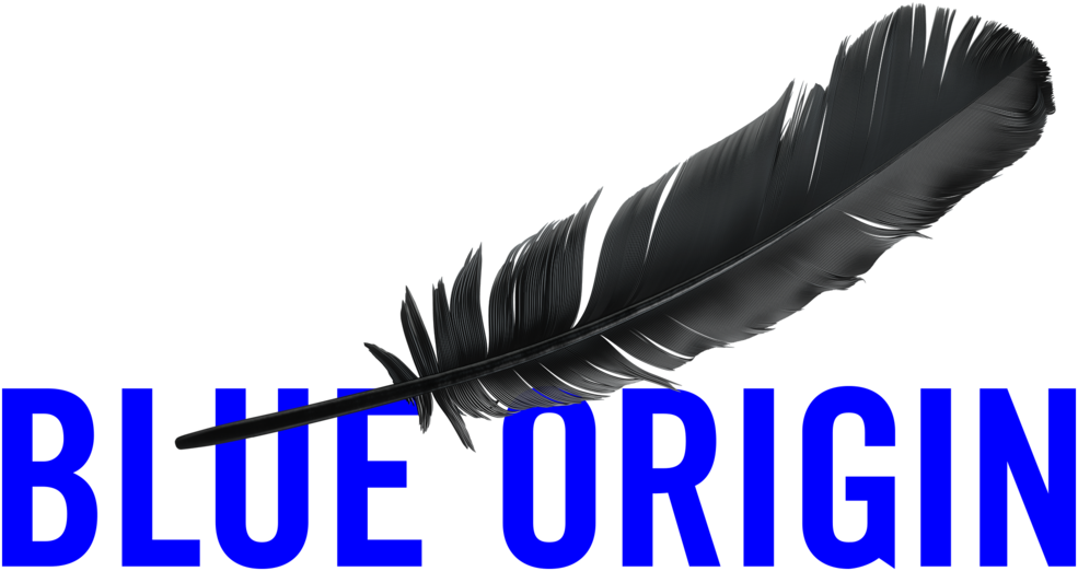 Image result for blue origin