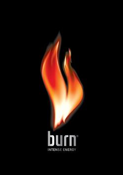 2004-2016. Burn logo - Logo Burn PNG