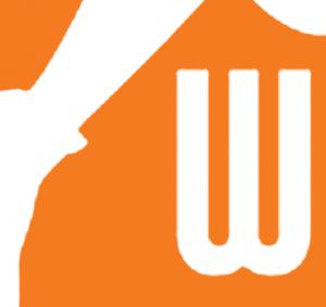 Logo Wnba PNG - 102031