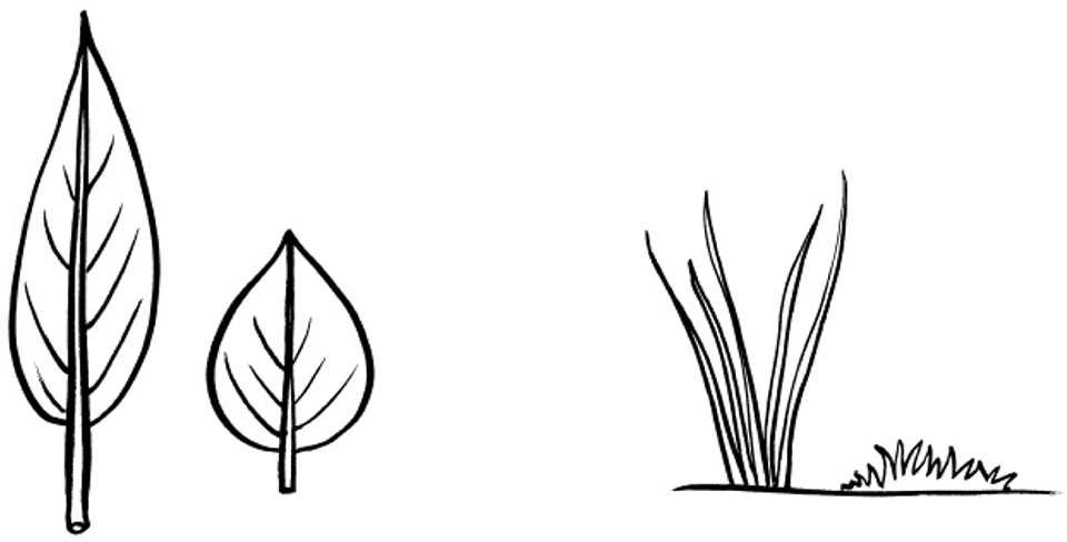 Long And Short Objects PNG - 78229