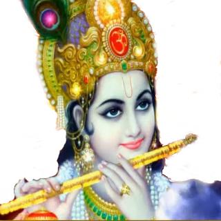 Lord Krishna HD PNG - 92868