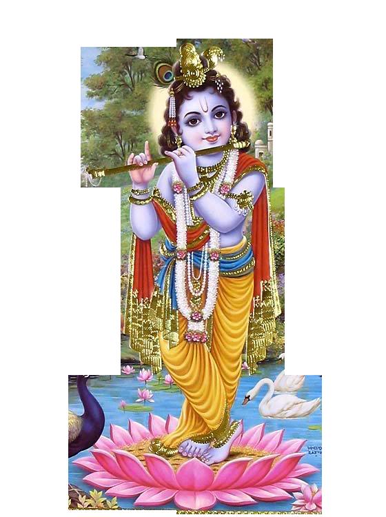 Lord Krishna PNG - 11146