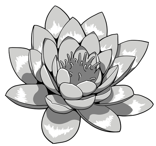 Lotus Flower Black And White PNG - 87946