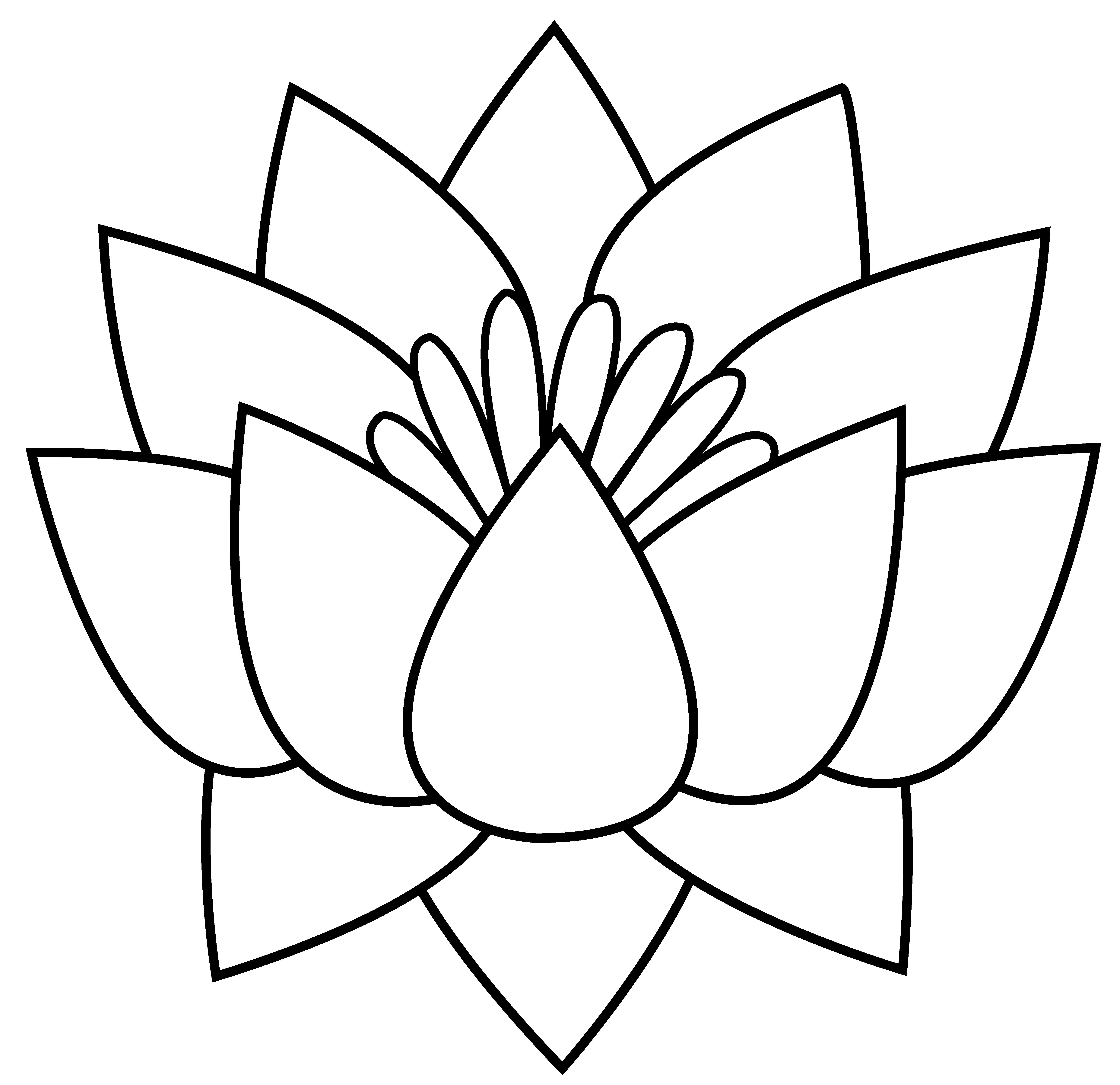 pin Drawn line art lotus flower #5 - Lotus Flower Black And White PNG