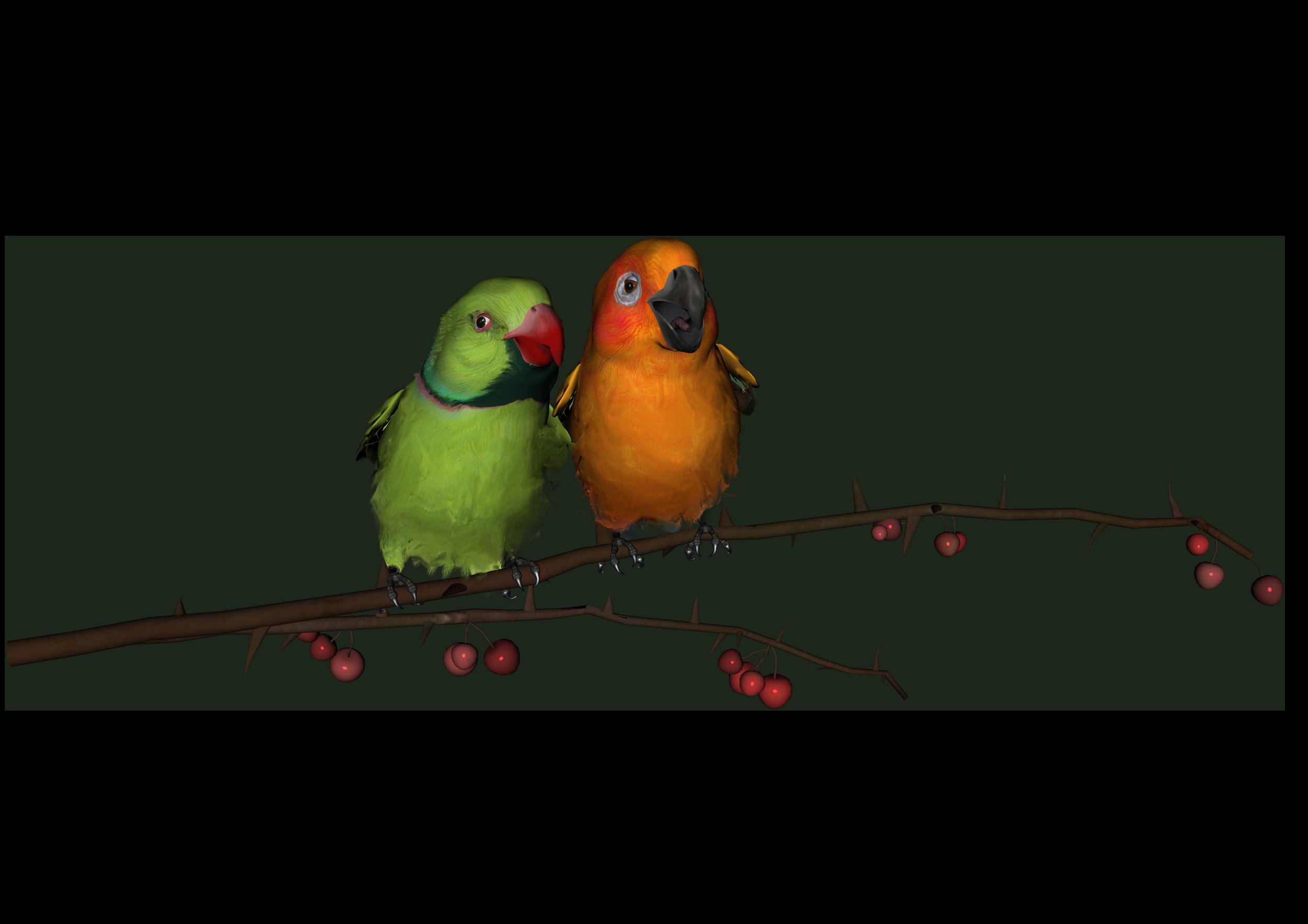 Love Birds PNG - 8437