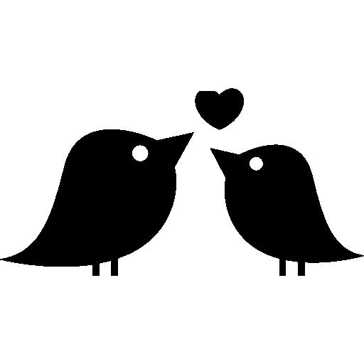 Love Birds PNG - 8434