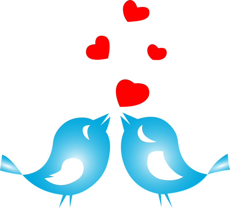 Love, Birds, Animals, Flying, Hearts, Romance, Couple - Love Birds PNG