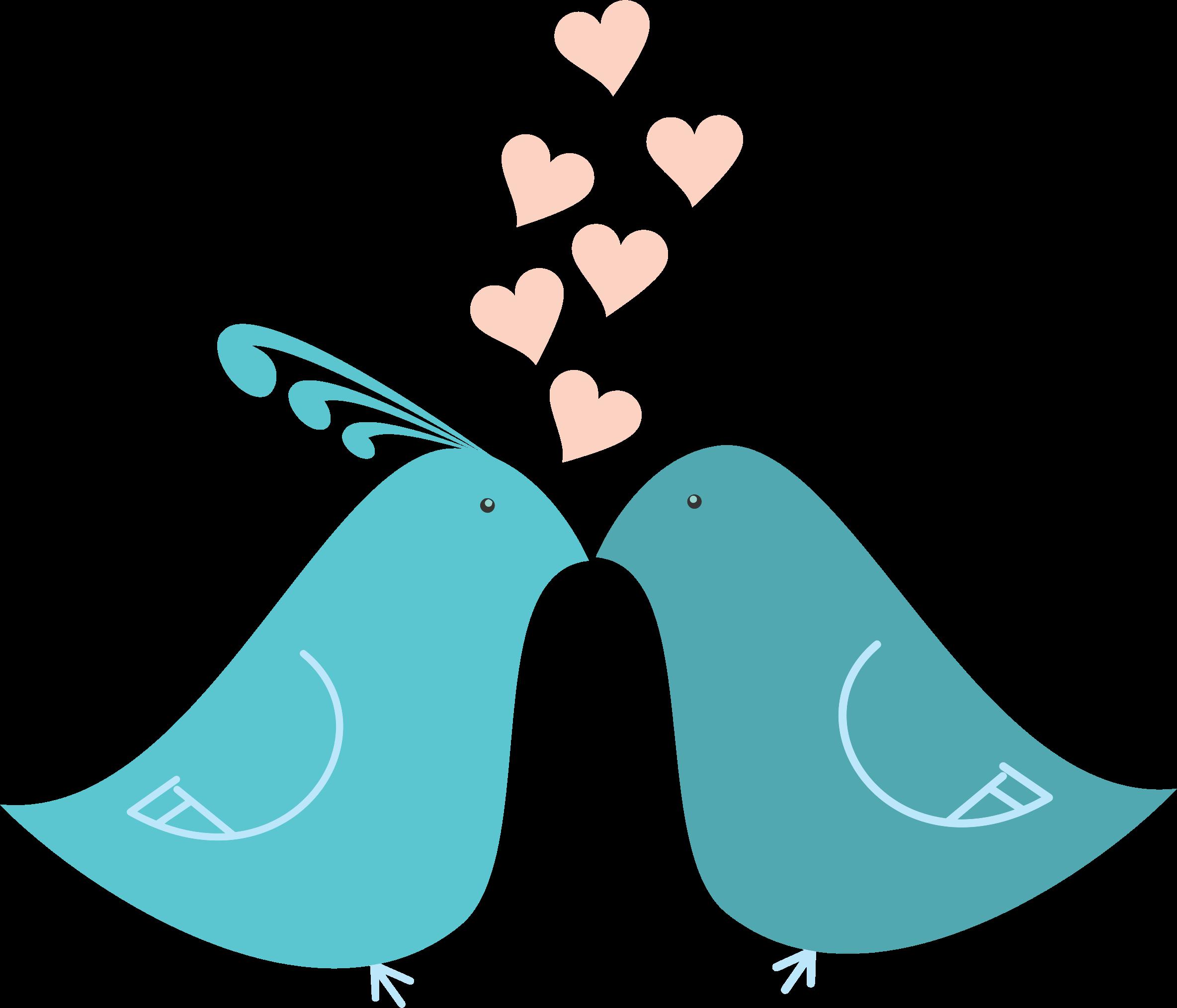 Love Birds PNG - 8431