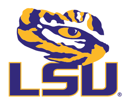 Convenience u0026 Added Value - Lsu Football PNG