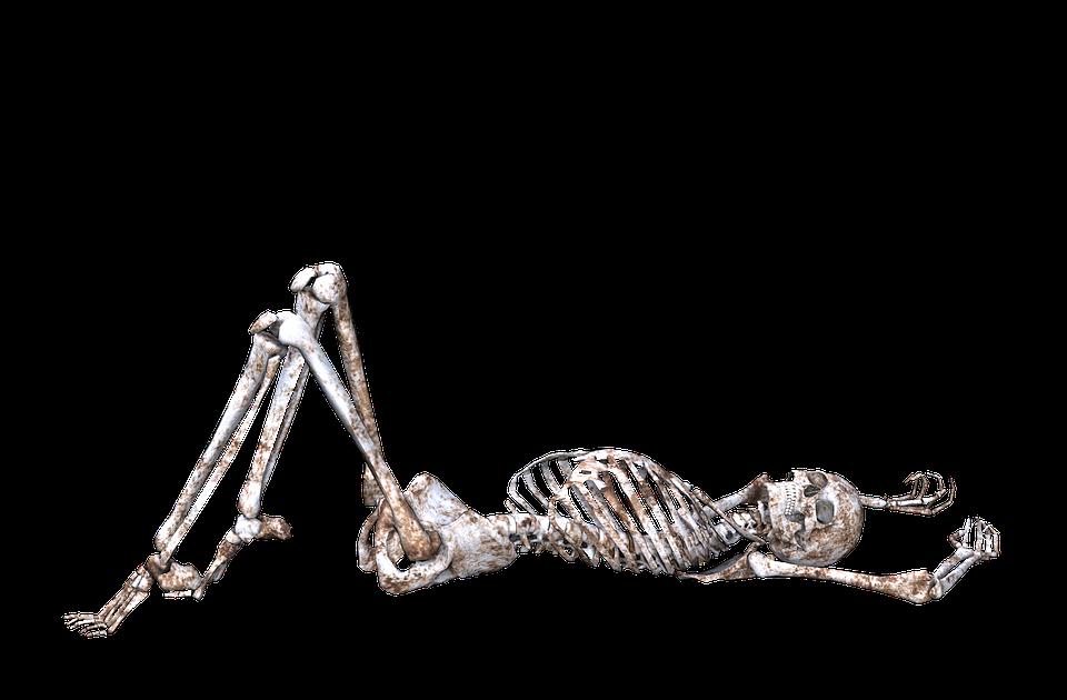 skeleton pose skull bones 3d