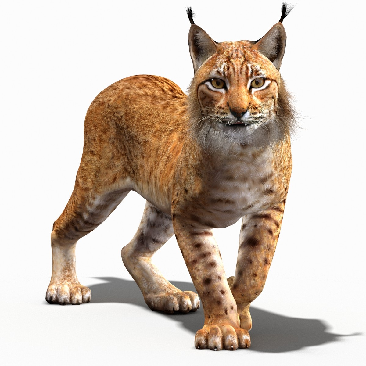 434ef90.png - Lynx PNG