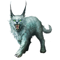Lynx Png Clipart PNG Image - Lynx PNG