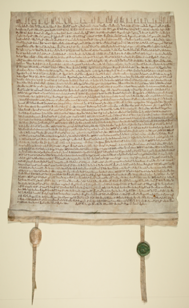 An original Magna Carta from the Bodleian Libraries, University of Oxford  will be on view on Level 2 of the Art of the Americas Building during the  annual PlusPng.com  - Magna Carta PNG
