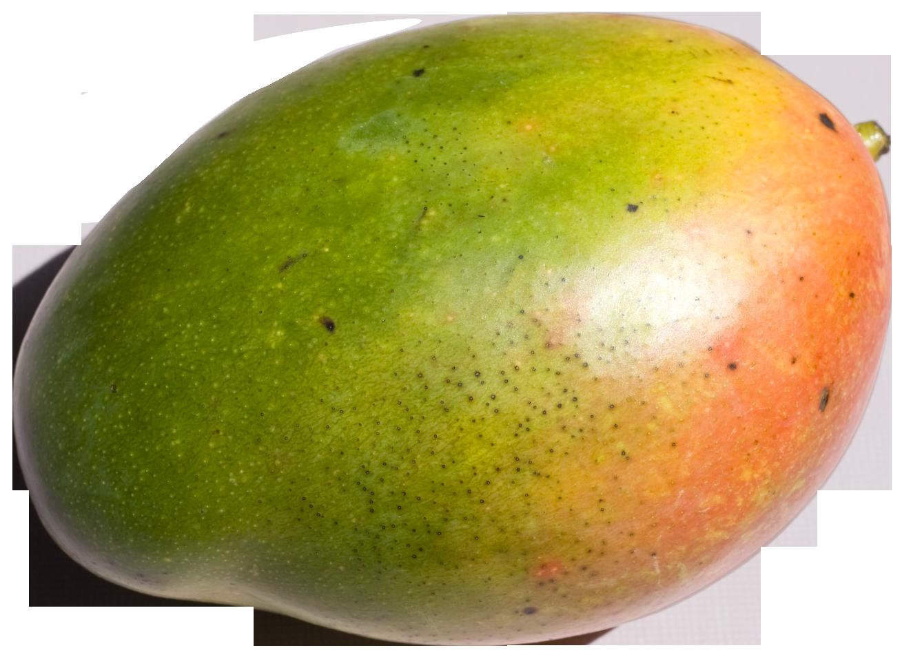 Mango HD PNG - 118574