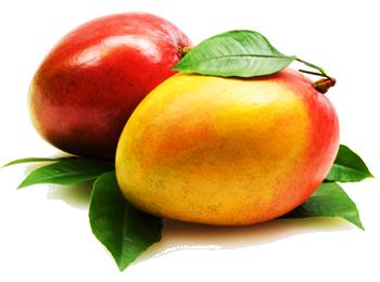 Mango HD PNG - 118565